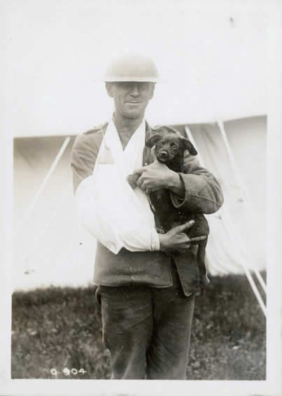 """World War I Photograph, """"A Man's Best Friend."""" """" A wounded Canadian soldier holds his puppy. Animals of all kinds lived in the trenches alongside soldiers. Source: Canadian War Museum"""
