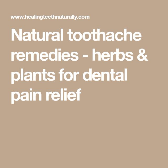 Natural toothache remedies - herbs & plants for dental pain relief
