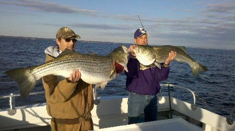 24 best fishing the chesapeake bay images on pinterest for Chesapeake beach fishing charters