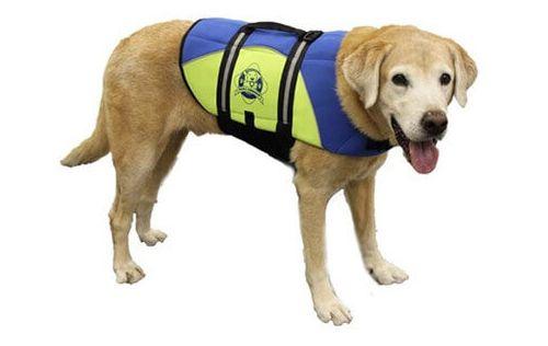 Blue Yellow - Fido Dog Life Jacket - Dog Life Jackets - Dog life jackets for dogs of all sizes.