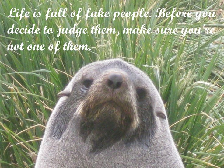 Life is full of fake people. Before you decide to judge them, make sure you're not one of them.