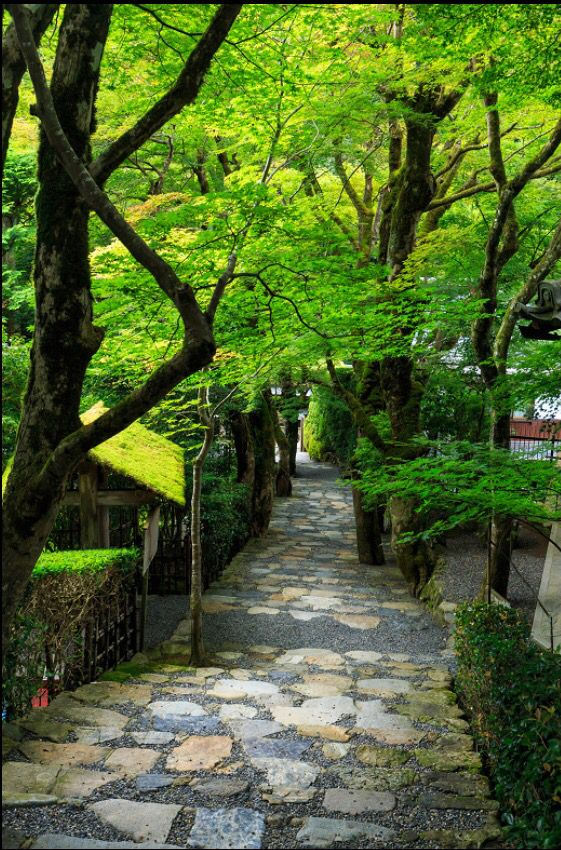 """Jakukou-in,Kyoto. """"The life you have led doesn't need to be the only life you have."""" – Anna Quindlen"""