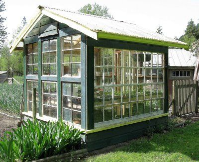 Green house made from old window panes.