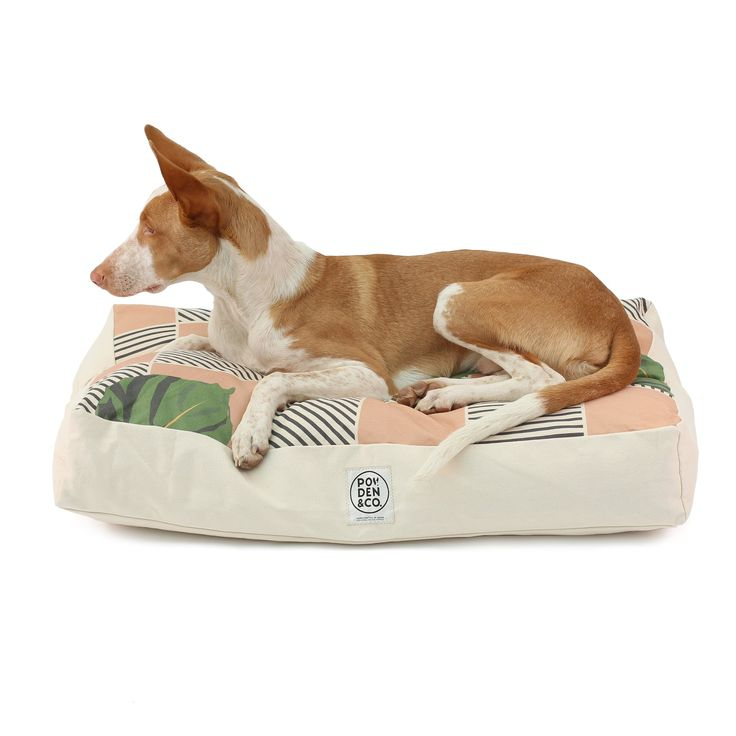 The Figgy dog bed ! - funky mediterranean inspired print deigned by us for you and your dog. sustainably made with only natural products such as organic cotton and hemp! see it now over on our website www.podenandco.com