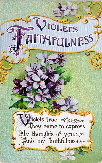 faithful violets...I did not know that violets represent faithfulness. Cool.