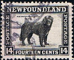 Newfoundland 1941 SG 284 Dog Fine Mint Scott 261 Other North American and British Commonwealth Stamps HERE!
