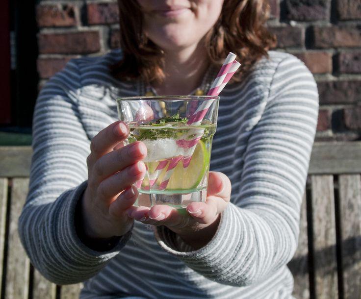 recept: hugo cocktail - HEMA Blog