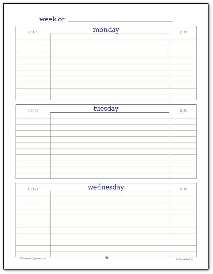 Best 25+ Student planner printable ideas on Pinterest Student - daily planner word template