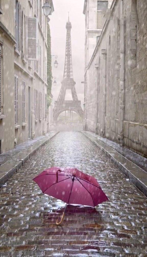 Un parapluie à Paris                                                                                                                                                                                 Plus