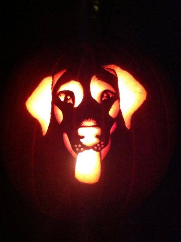 Carve a pumpkin to look like your dog free printable