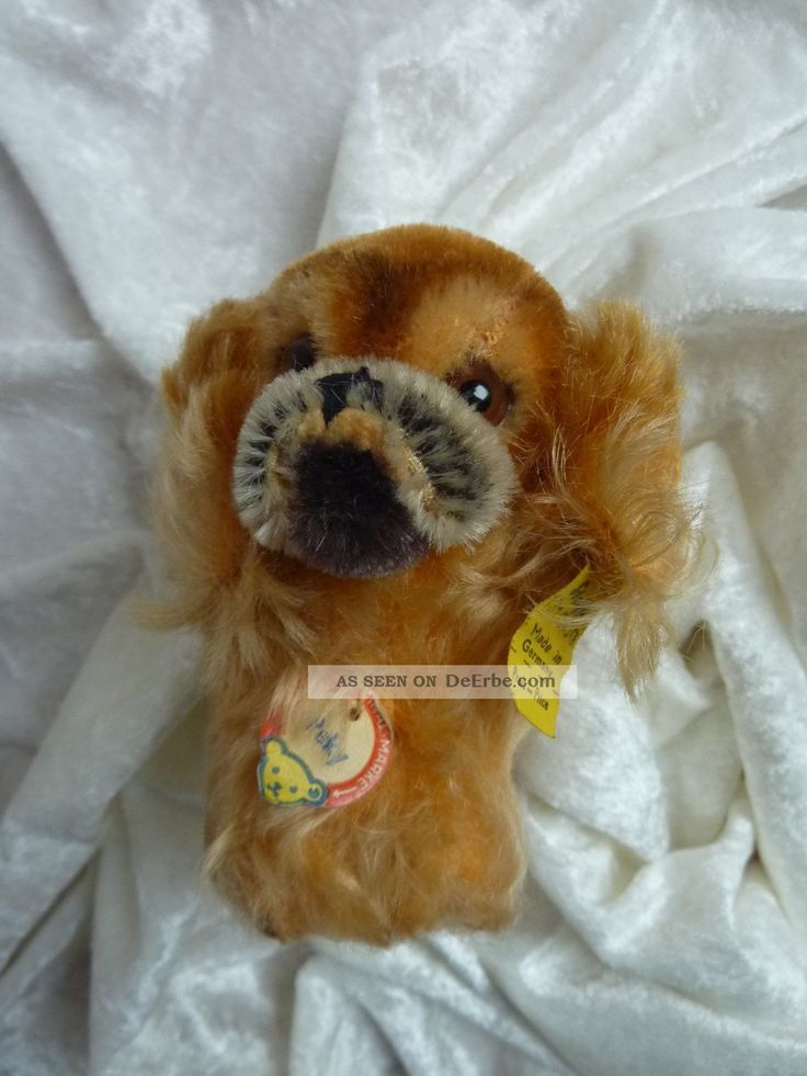 Sammelwürdiges Altes Steiff Stofftier Hund Pekinese Peky 1310.  00 Aus Sammlung Tiere Bild