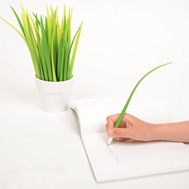 PENS THAT LOOK LIKE A SPRING ONION