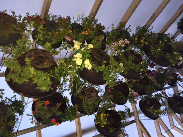 Hanging Flower Baskets Home Depot Canada : Best images about diy hanging basket on