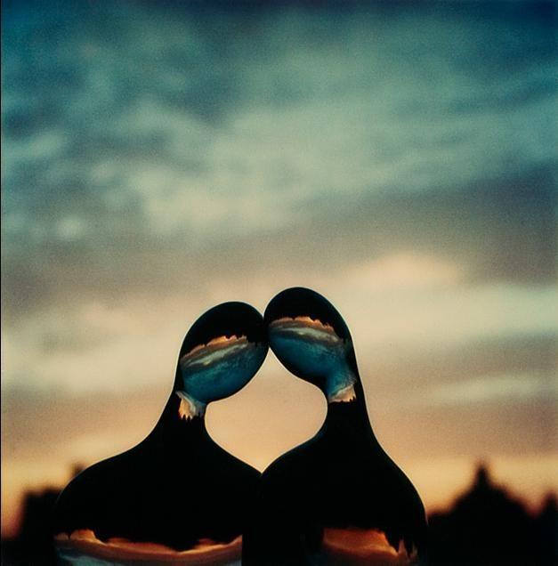 André KERTÉSZ :: July 3, 1979 / Polaroid SX-70 original