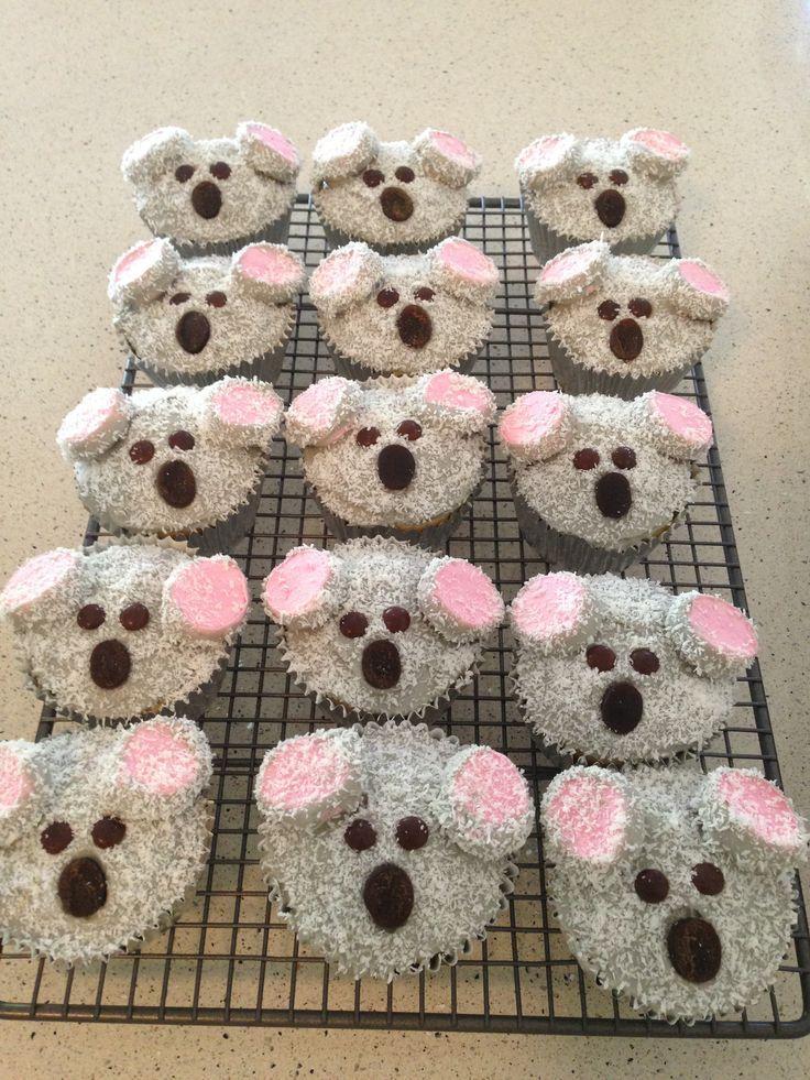 Koala cupcakes. Australia cupcakes.