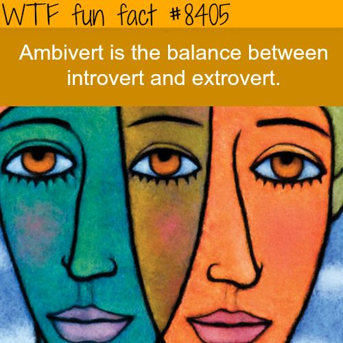 Ambivert - WTF fun facts