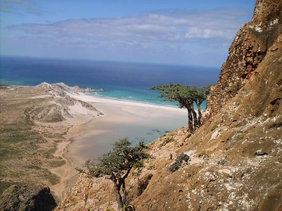 Socotra Island - aka Soqotra. The four-island archipelago is located in the Indian Ocean approximately 250km east of the Horn of Africa. It is part of Yemen, Governorate of Hadhramaut. Its isolated position has given rise to spectacular natives endemic to the island including the haunting Dragon's Blood tree (Dracaena cinnibari) and an island chameleon (Chamaeleo monachus)