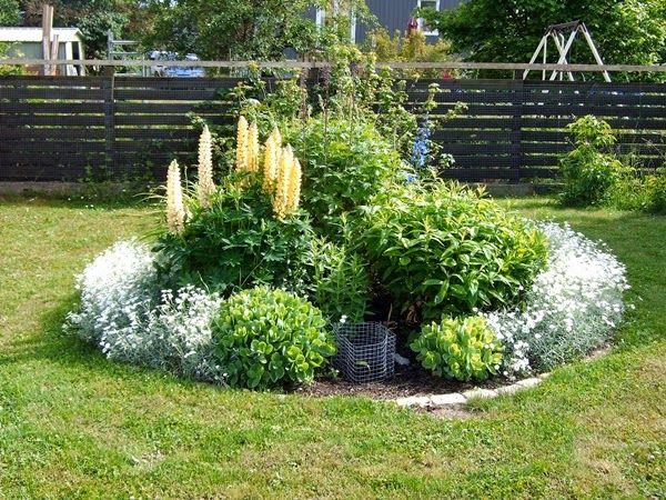 Planera, känn in, ta tillvara - och plantera träd! Mitt första tips till den som flyttar till en ny trädgård, eller helt enkelt får intre...
