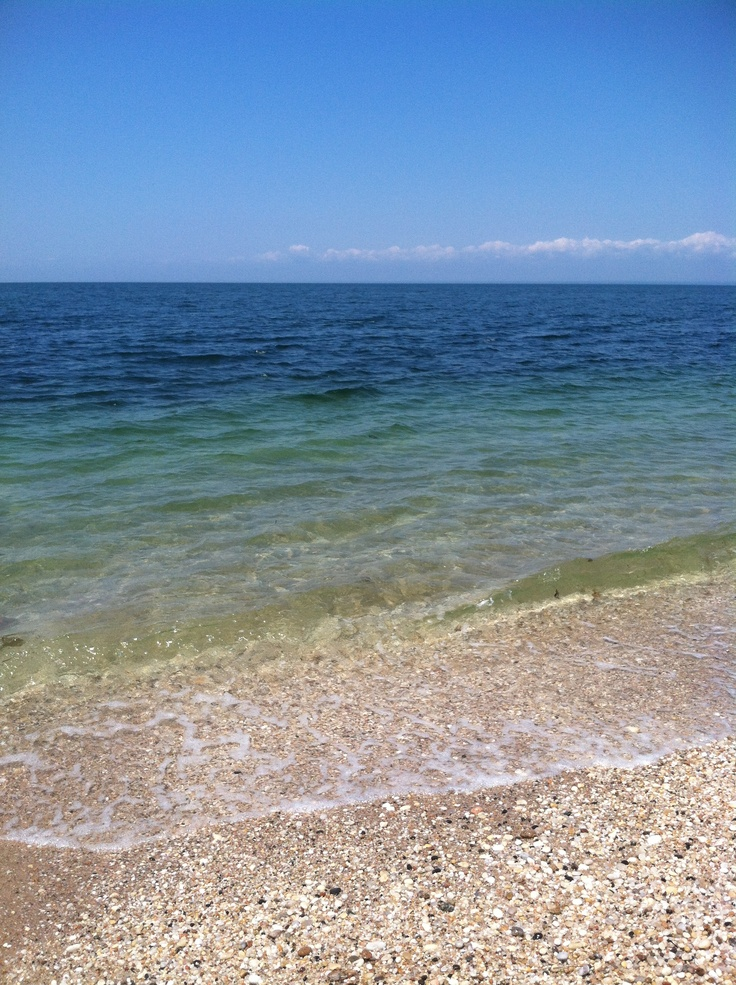 164 Best Images About Greenport On Pinterest Beach Cottages North Shore And Restaurant