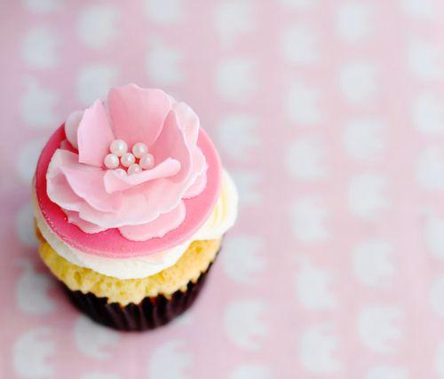 Cupkake blomst perler: Flowers Cupcakes, Pink Flowers, Cat, Blue, Couture, Yummy Cupcakes, Pink Cupcakes, Minis Cupcakes, Cupcakes Rosa-Choqu