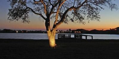 The changing colors of this tree under the spell of professional tree lighting add to this picture perfect image.