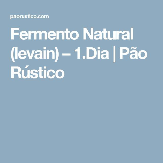 Fermento Natural (levain) – 1.Dia   Pão Rústico