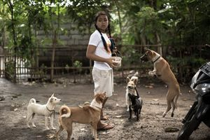 Agung Parameswara - Beautiful Soul: Bali's Dog in The Eyes of Agung Dewi | LensCulture