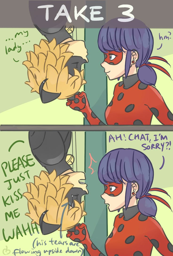 Melissa here. uni student. CURRENTLY A MIRACULOUS LADYBUG TRASH ARTIST ♡ I try to post art at least...
