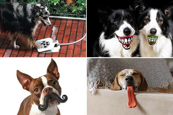 ТОП-10 необычных аксессуаров для собак  Друг собаки – это звучит гордо. Но звание это нужно завоевать. Хорошие корма и удобная подстилка не в счет. Домашние питомцы тоже любят, когда им дарят приятные мелочи. Обзор самых необычных аксессуаров для собак поможет их хозяевам определиться с подарком.    собака, дизайн, ошейник