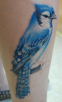 jay bird tattoos | Love me some funny Blue Jays!! | PARROT, BIRD & FEATHER TATTOOS