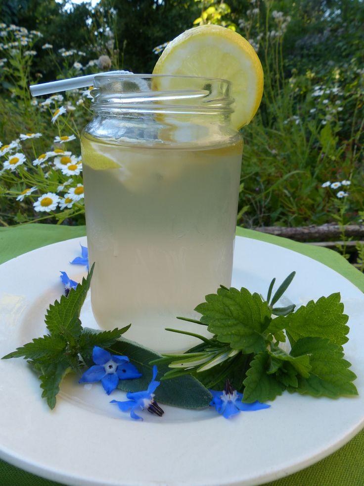 Infusion glacée à l'ortie et plantes aromatiques
