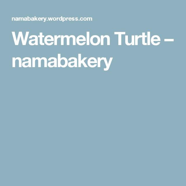 Watermelon Turtle – namabakery