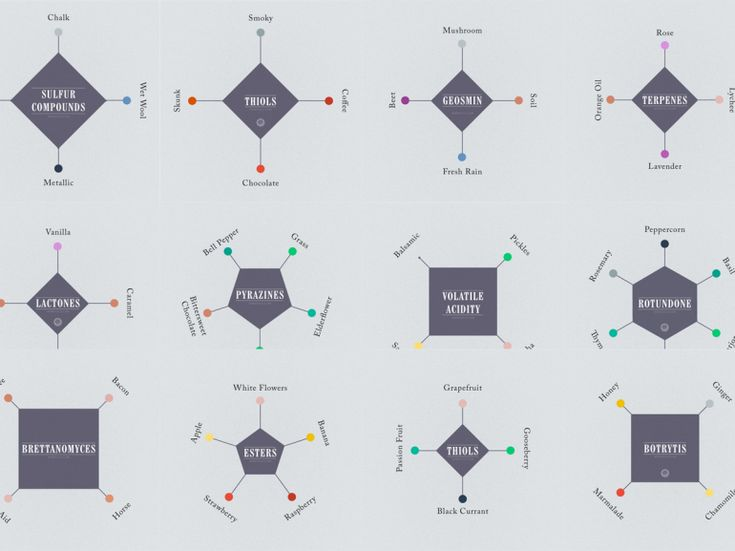 Where Wine Flavors Come From: The Science of Wine Aromas