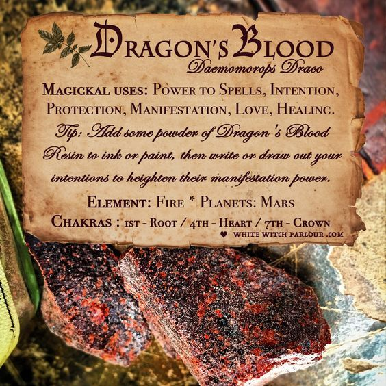 Magical Uses Of - Dragon's Blood | Magical Properties of    | Magic