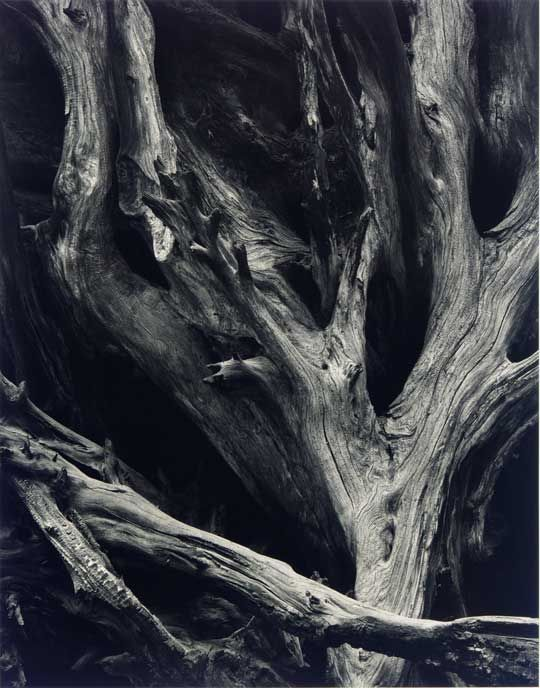 Ansel Adams - Remember how many of the tools we have, that he didn't, to create this wonderful image. Great artist. S