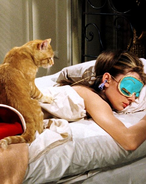 Holly Golightly: He's all right! Aren't you, cat? Poor cat! Poor slob! Poor slob without a name! The way I see it I haven't got the right to give him one. We don't belong to each other. We just took up one day by the river. I don't want to own anything until I find a place where me and things go together. I'm not sure where that is but I know what it is like. It's like Tiffany's. 41 12