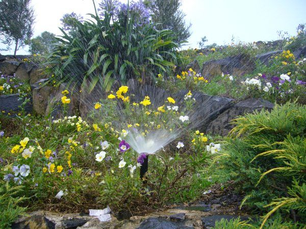 Riego especializado para la flora.