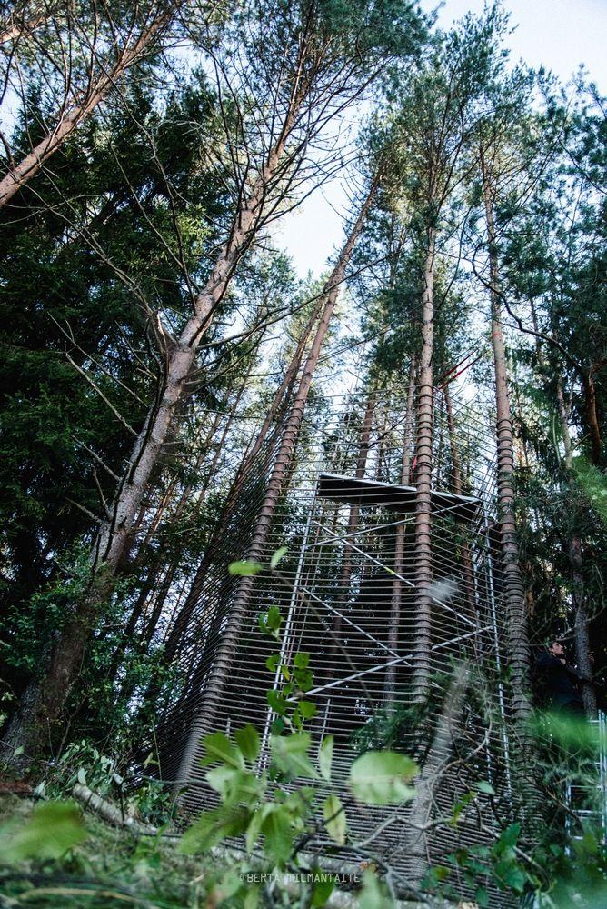 Galería de Templo del bosque / Marco Casagrande - 13