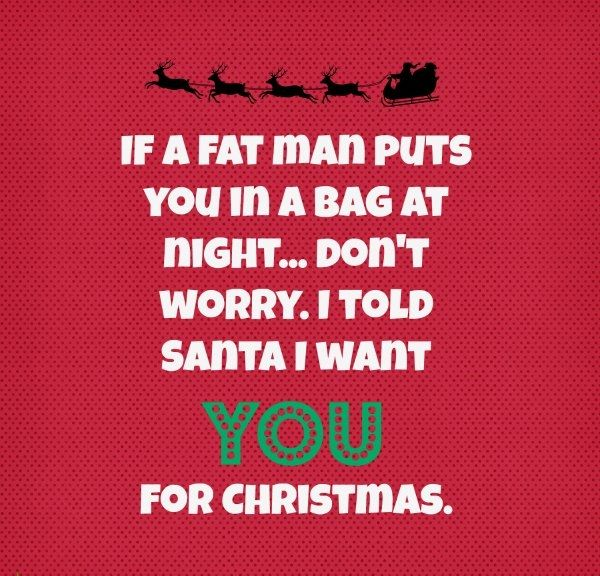 Funny Christmas Quotes for Friends                                                                                                                                                                                 More