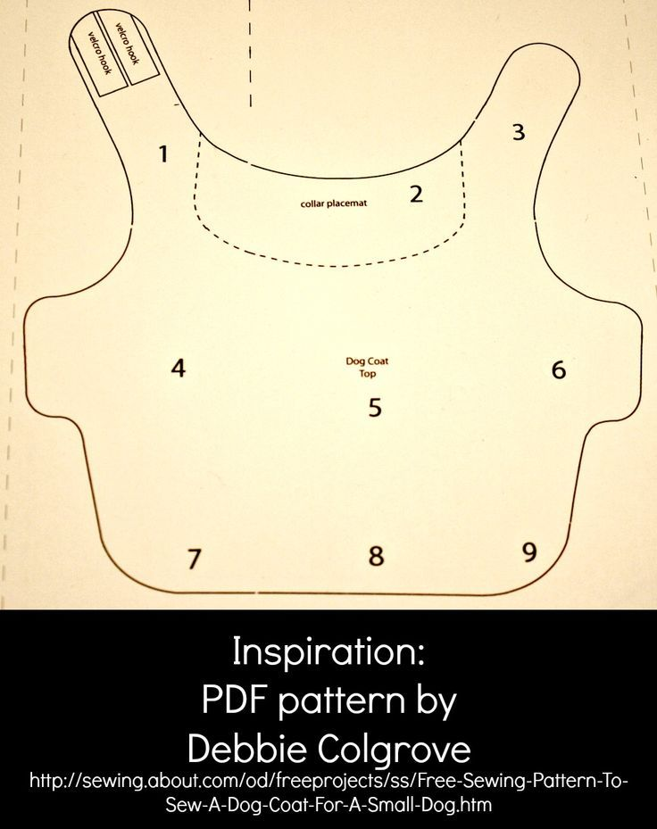 pattern for a 12 pound dog coat | ... little coat i found this free pattern that was for a very small dog: