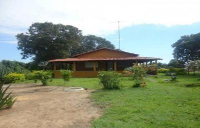 SILVANO REIS IMÓVEIS - Imóveis Urbanos e Imóveis Rurais. - Detalhes do Imóvel - Fazenda para Venda na cidade de Paranã (TO) no bairro Zona Rural