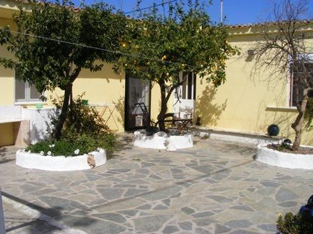 ATTRACTIVE COURTYARD,  FLOWER & VEGETABLE GARDENS. WORKSHOP.  Reduced price. TRANSFORM YOUR LIFE & COME TO EVIA, GREECE