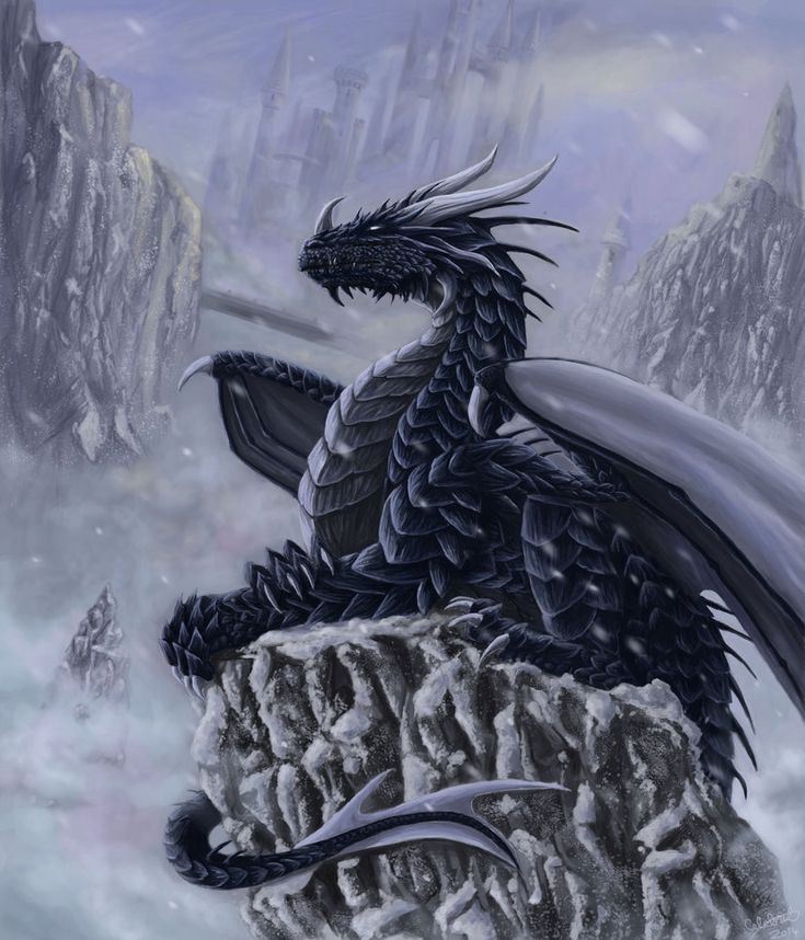 Winter dragon by x-Celebril-x on DeviantArt