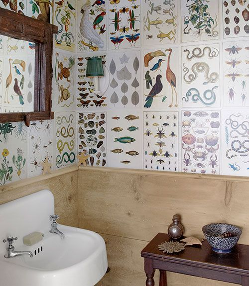 14 best scientific wallpaper images on pinterest for Country living bathroom designs