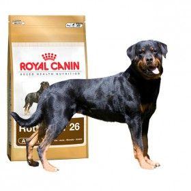 Alimento a medida para perros de la razaRottweilerde más de 18 meses. #perro #dog #maskokotas #royalcanin #rottweiler