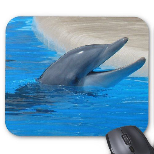 Dolphin/n Mouse Pad