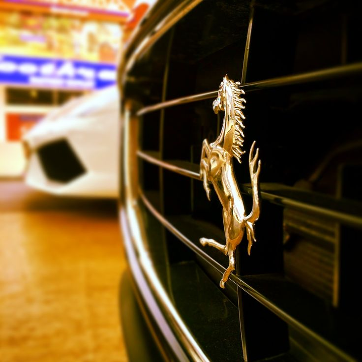 All hail the #Prancing #Horse _______________________ #Ferrari #dream #amazing #awesome #California #italian #cars #carporn #amazingcars #ferrariexotic #picoftheday #loveit #bigboytoyz #BBT