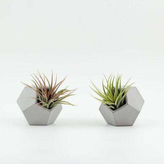 Porte Plante Jardiniere En Beton Vase Pour Plante Grasse