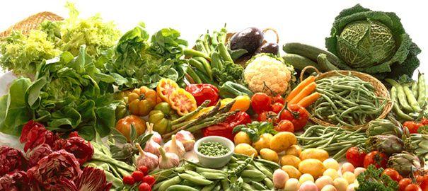 «Que ton aliment soit ton seul médicament» Affirmait Hippocrate il y a deux millénaires et demi «On creuse sa tombe avec sa fourchette(… avec ses baguettes) » Proverbe chinois «Toutes les maladies débutent dans l'intestin».......DOCUMENT.......