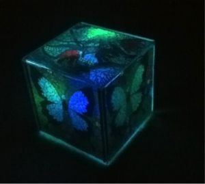 Multicoloured LED Night Light - http://greenpower-download.jobsolarenergy.com/multicoloured-led-night-light/